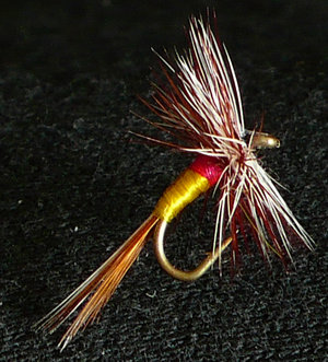 not many people still dress this with the hair from a ram's scrotum but still a great fly